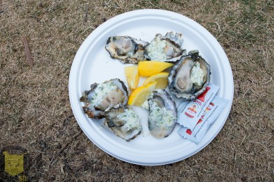 oysters_18879540811_o
