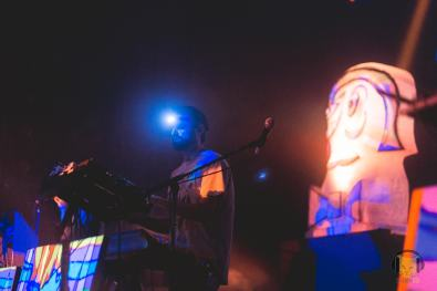 animalcollective30