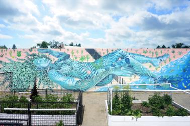 Trascendiendo Fronteras by Celeste Byers & Emma Considine