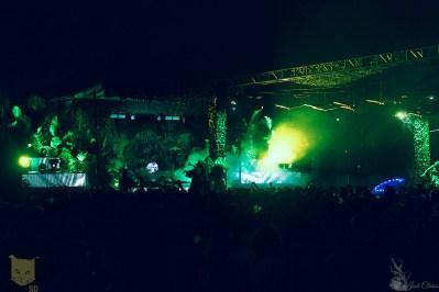 Palms Stage Night
