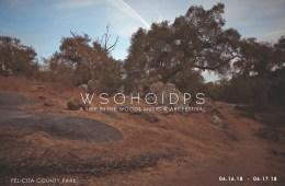 A Ship In The Woods' 'Ship Fest'