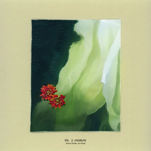 Track Review: Iris: Creature