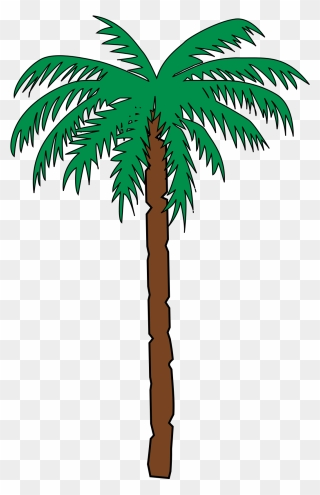 Background Kelapa Sawit : background, kelapa, sawit, Clipart, Kelapa, Sawit, Cartoon, Download, (#514076), PinClipart