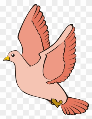 Burung Dara Png : burung, Flight, Burung, Merpati, Cartoon, Clipart, (#4067500), PinClipart