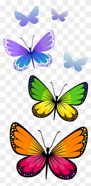 Butterfly Images Clip Art : butterfly, images, Butterfly, Cliparts, Download, Format, Clipart, Transparent, (#52816), PinClipart