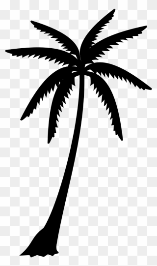Palm Tree Clipart Black And White : clipart, black, white, Black, Download, PinClipart
