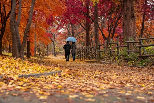 23 Best Things About Fall