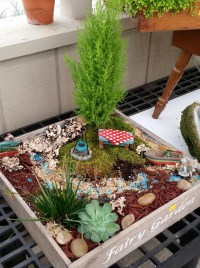 Garden Projects For Kids | 10 DIY Steps for Miniature ...