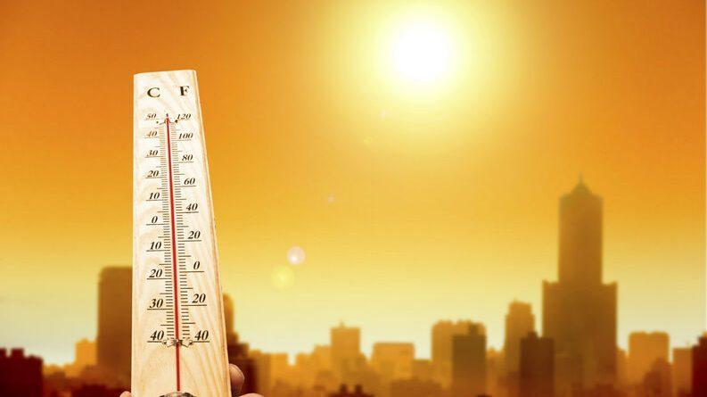 El 2019 fue el segundo año más cálido jamás registrado en el mundo