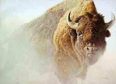 Bateman-Chief American Bison