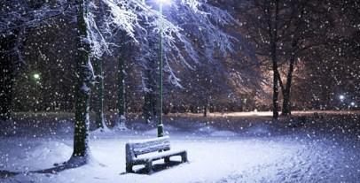 winter-snow-night-shop-trees-park-light_28630