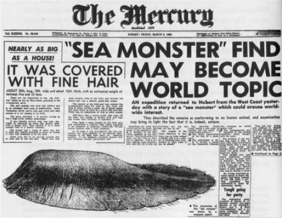 The Mercury Tasmanian Globster1