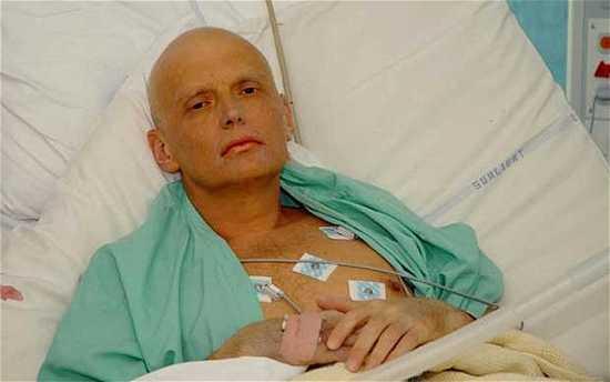 Litvinenko-Alexand 2024119B