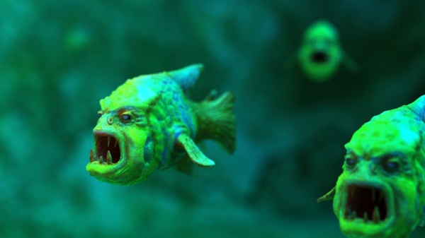 Angryfish Night