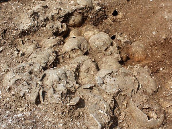 Ridgeway-Burial-Pit-Skulls 16949 600X450