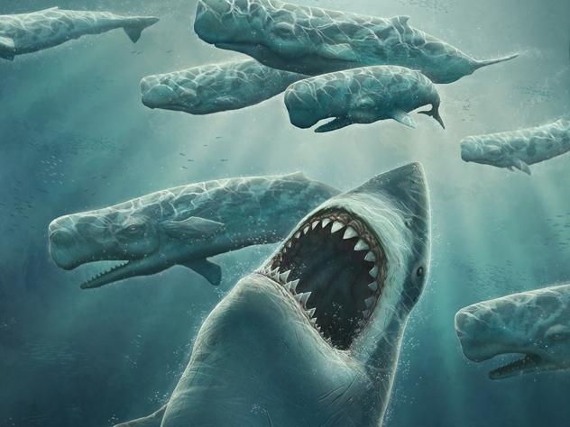 giant shark, shark, giant, ocean, sea monster, sea, monster, deep, water, large teeth,