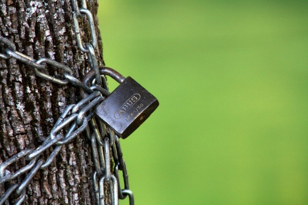 chained_tree_by_picture_bandit-d4b6xuo