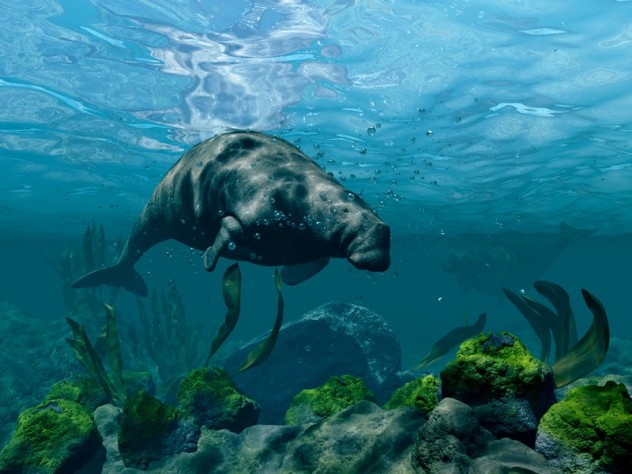 10 Extinct Animals That Science Could Bring Back From The ... - photo#15