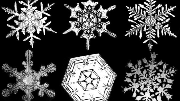 bentley_snowflakes_2