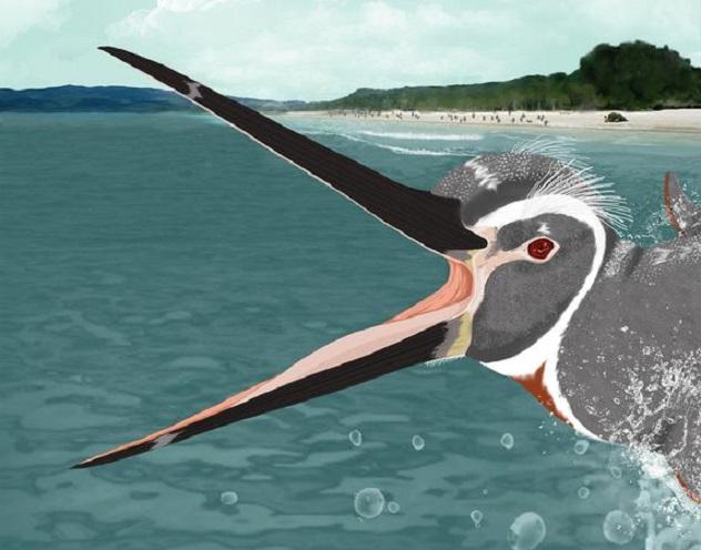 ancient-huge-penguins-beach_26835_600x450