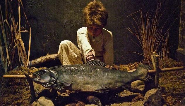 salmon-of-knowledge