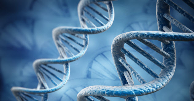 5-dna_000054659734_Small