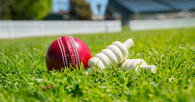 9-cricket-ball_000075330073_Small
