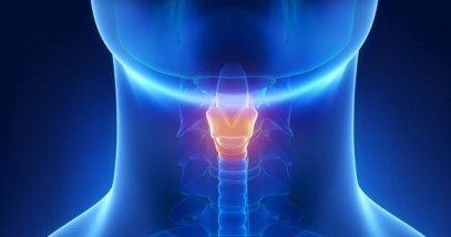 9-feature-vocal-cords_000039765352_Small
