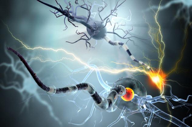 1-epilepsy-brain_000058141064_Small