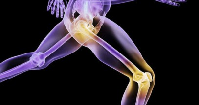 feature-10-biomaterial-joint-replacement