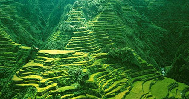feature-5-banaue-rice-terraces