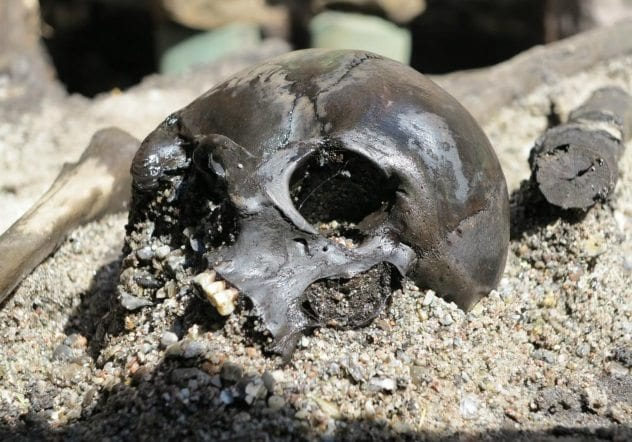 alken-enge-skull