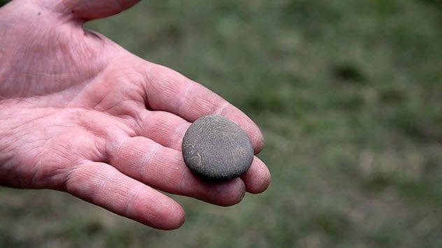 9-comox-valley-pebble