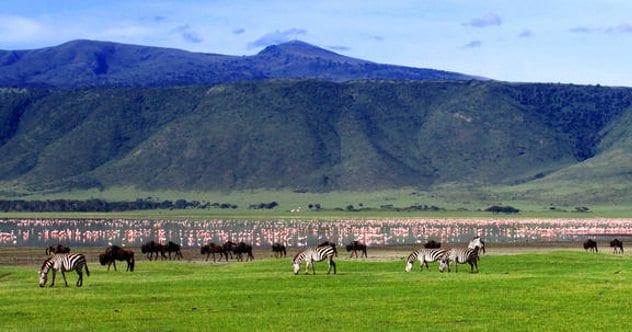 Ngorongoro_Crater View
