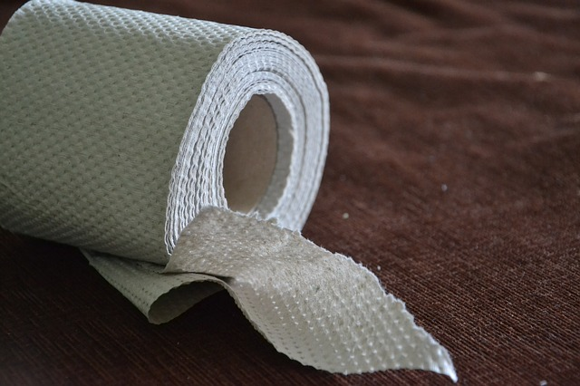 7 Very Interesting Facts About Toilet Papers