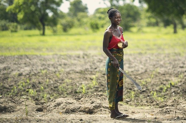 Africa's Climate is Getting Worse for Farming, Survey Reports