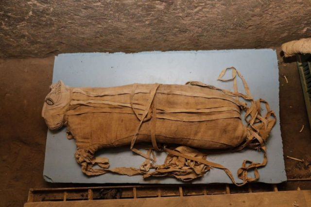 5 Amazing New Ancient Egyptian Discoveries