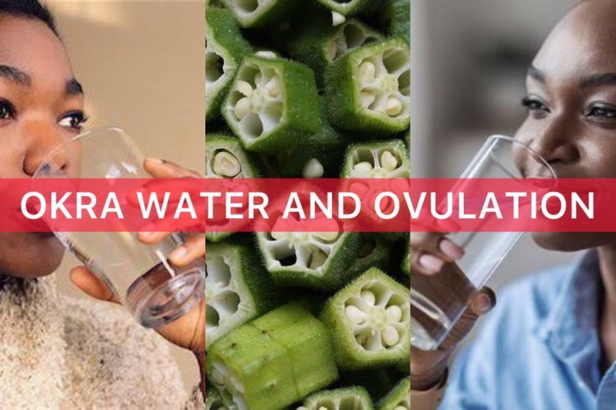 okra water for twins