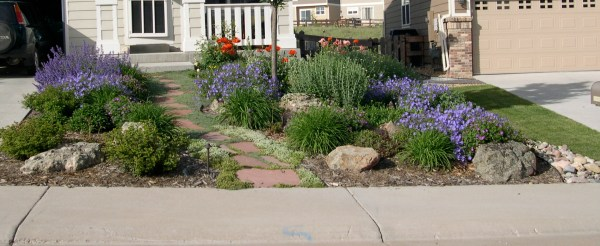 word of day xeriscaping