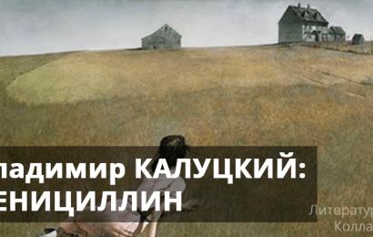 Владимир КАЛУЦКИЙ: ПЕНИЦИЛЛИН