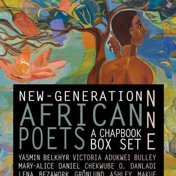 "<span class=""entry-title-primary"">Reclaiming the Black Body</span> <span class=""entry-subtitle"">A Review of New-Generation African Poets</span>"