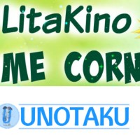 Animes That Need Second Seasons Ft. UnOtaku