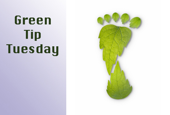 Green Tip Tuesday Carbon Footprint