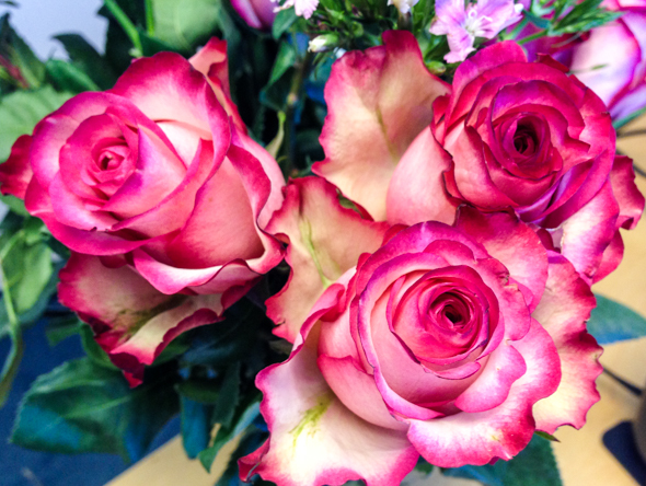Bouqs roses