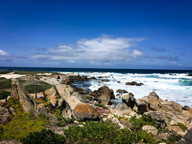 view along 17-mile drive