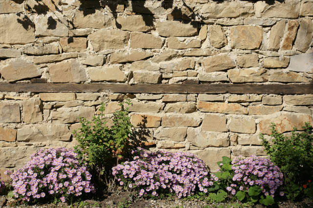 stone wall with flowers blooming