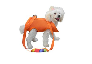 Fashion Dog Harness Lightinthebox