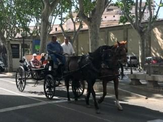 Alltid i Palma