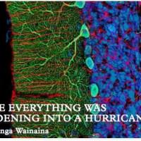 Binyavanga Wainaina, una vuelta muy esperada