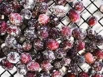 FROSTED CRANBERRIES